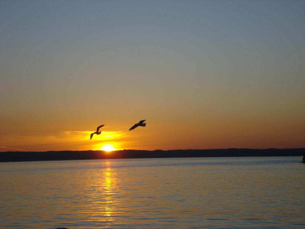 Phillip Island in Astralien