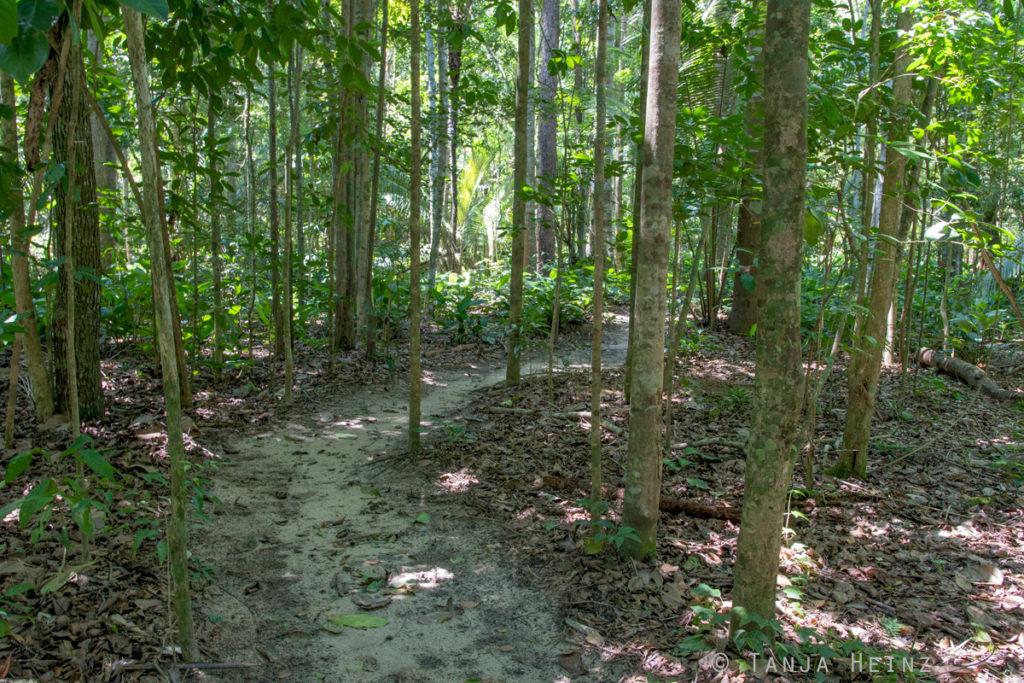 Reserva Natural Vale in Brasilien