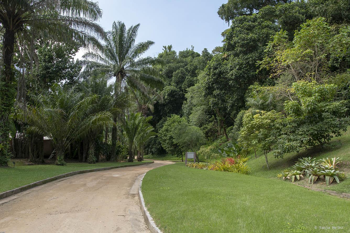 Jardim-Botânico-Rio-de-Janeiro