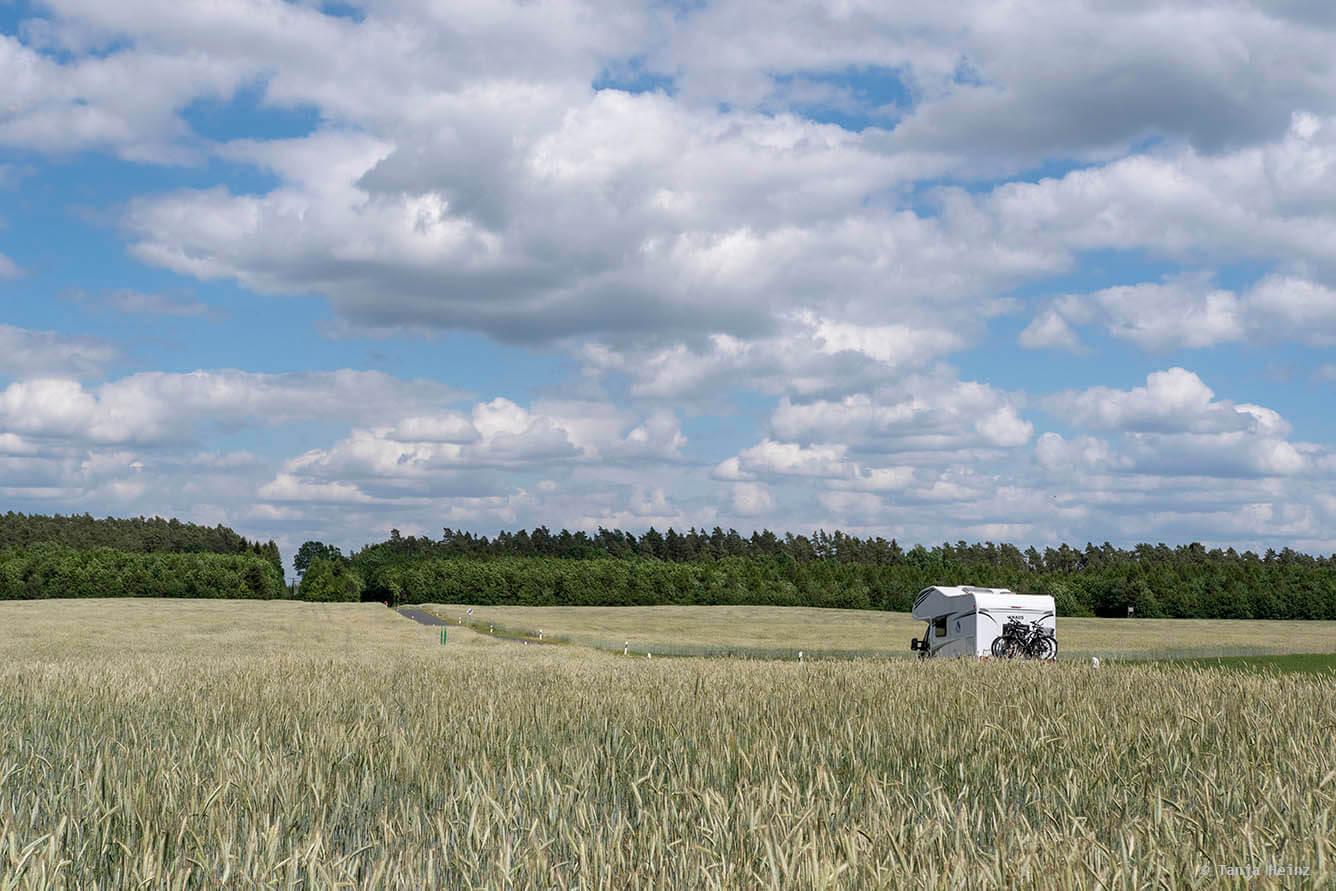 Landschaft in der Müritz