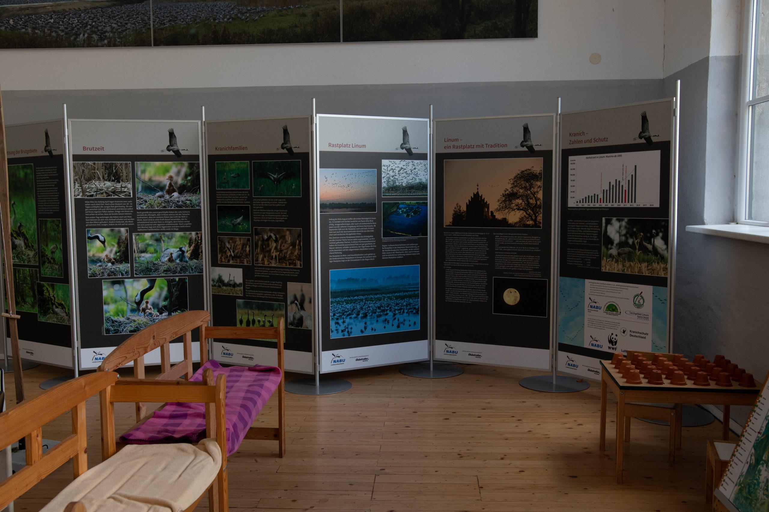 Exhibition about cranes