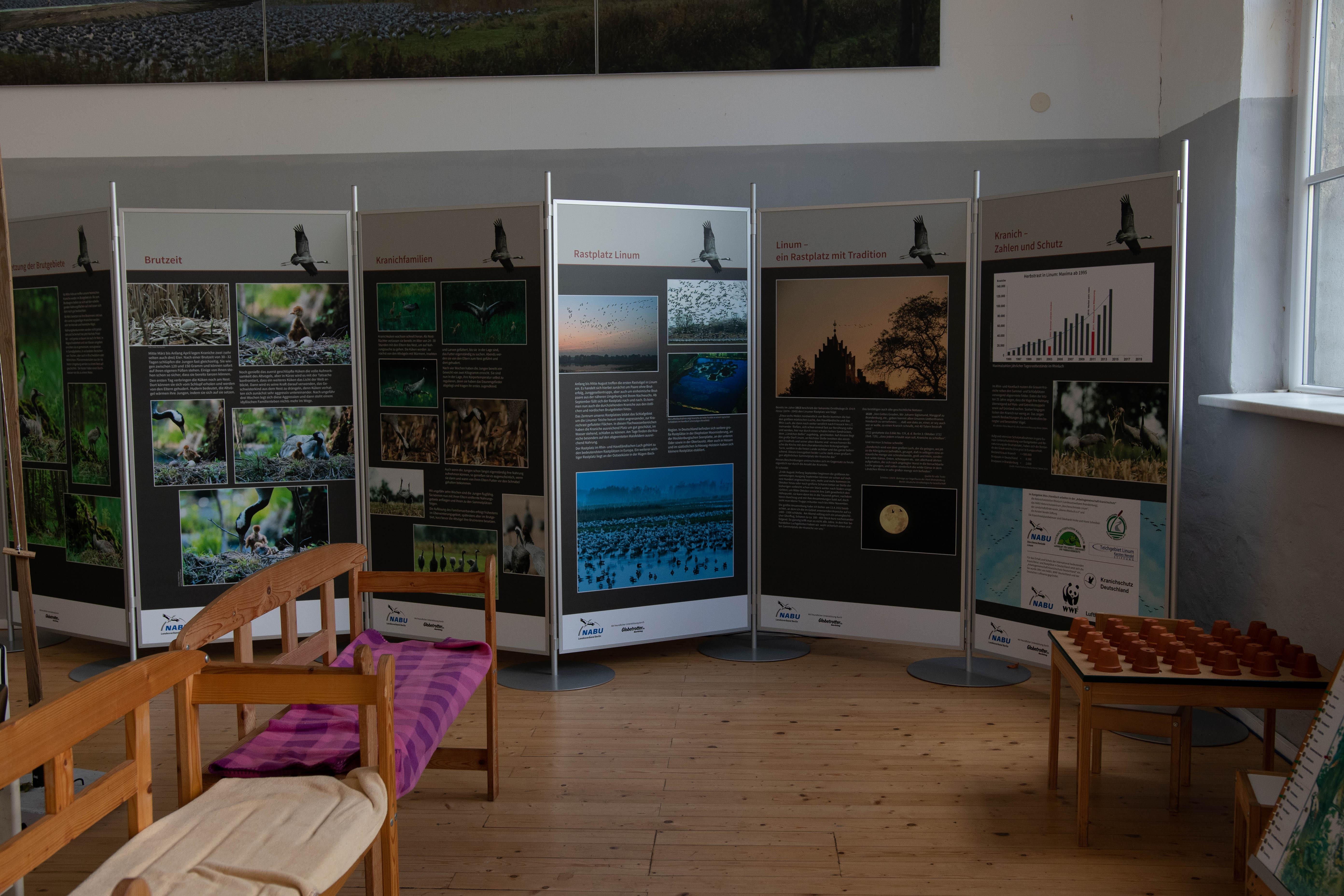 Ausstellung über Kraniche