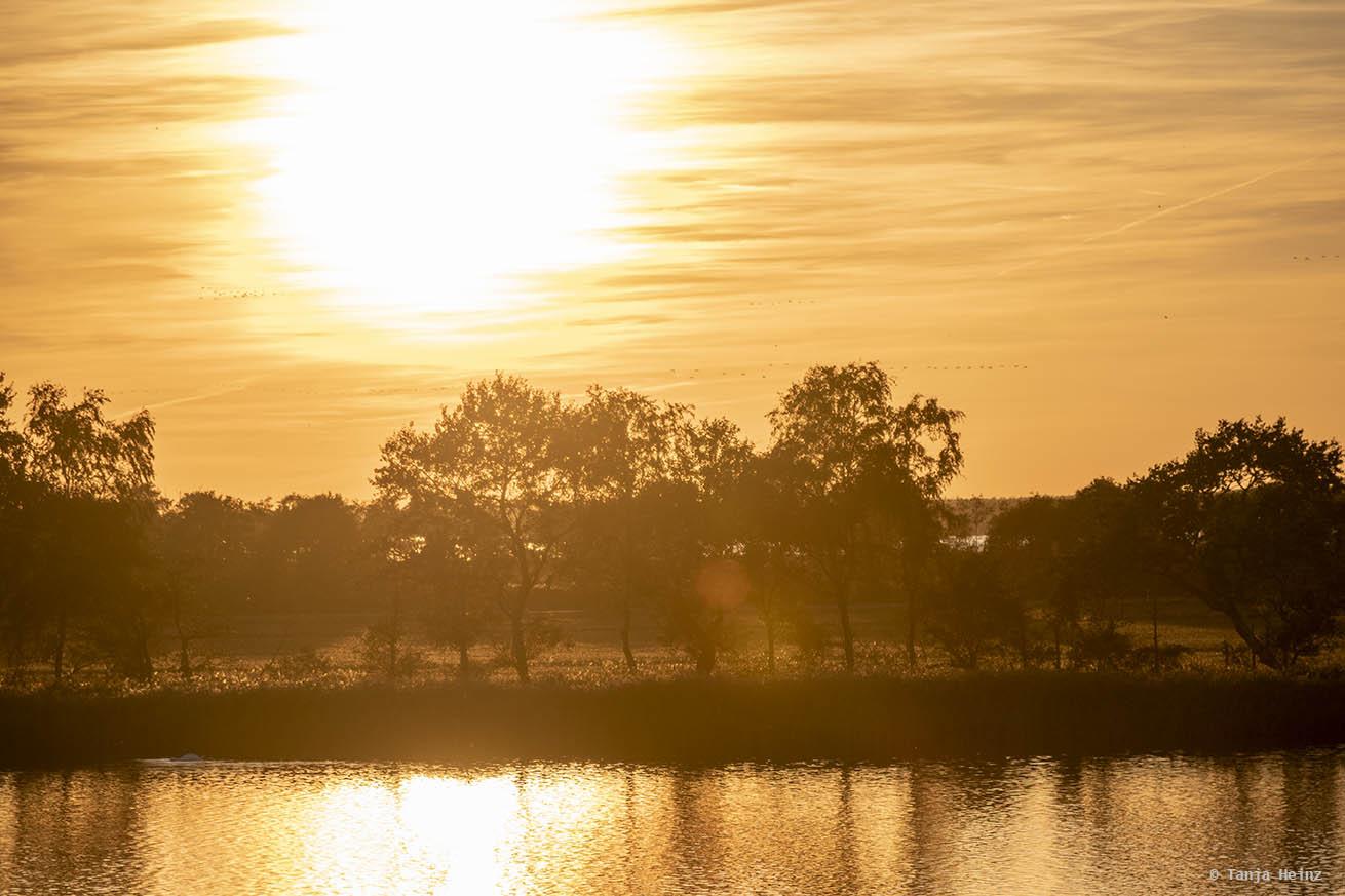 Sonnenuntergang auf Fischland-Darß-Zingst