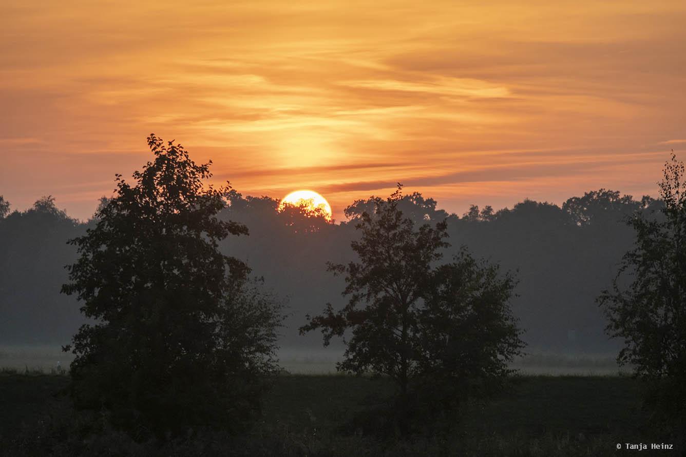 Sunset in Zingst