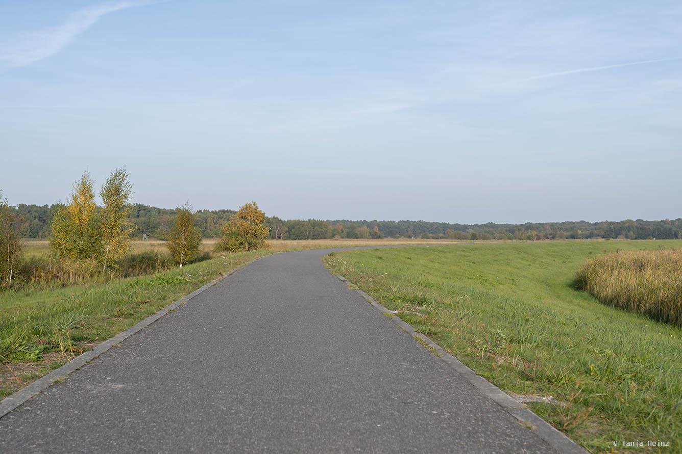 Fahrradweg auf Fischland-Darß-Zingst