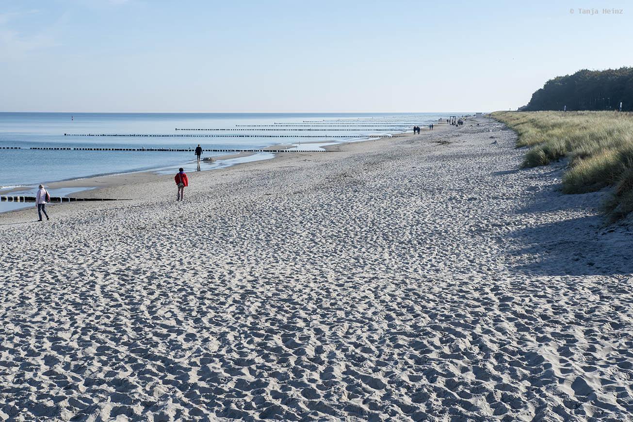 Beach on Fischland-Darß-Zingst