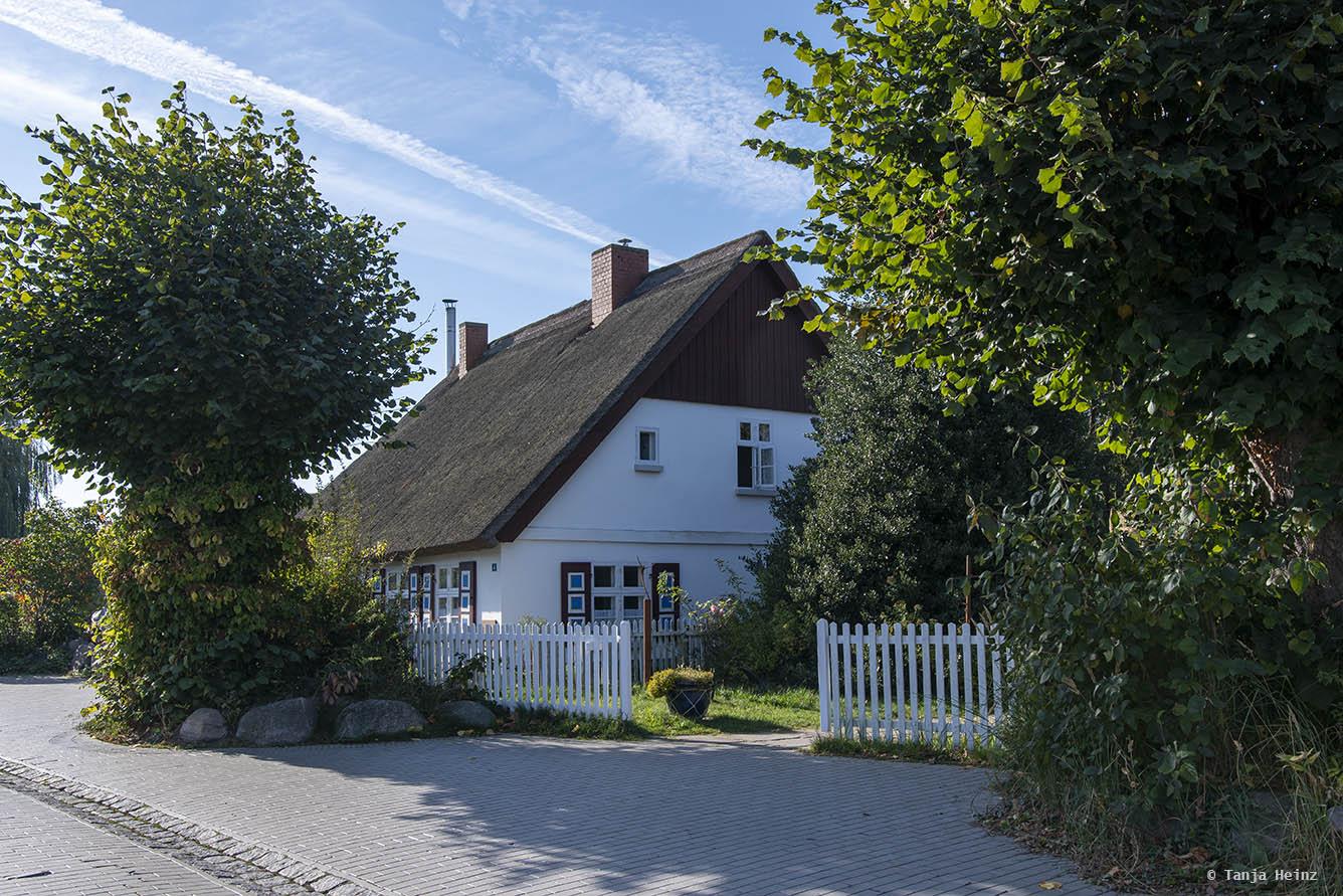 Reetgedecktes Haus in Zingst
