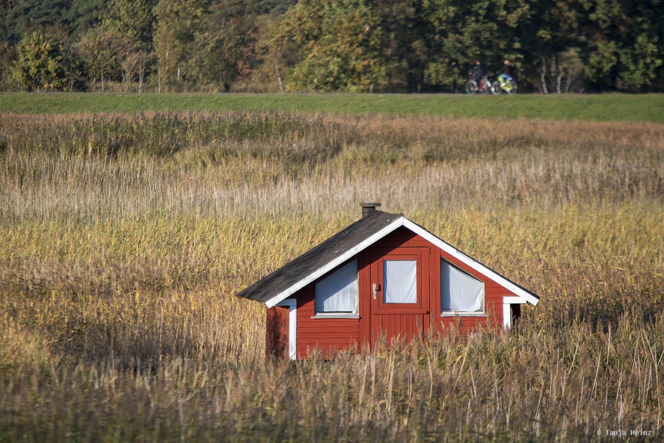 Hütte auf Fischland-Darß-Zingst