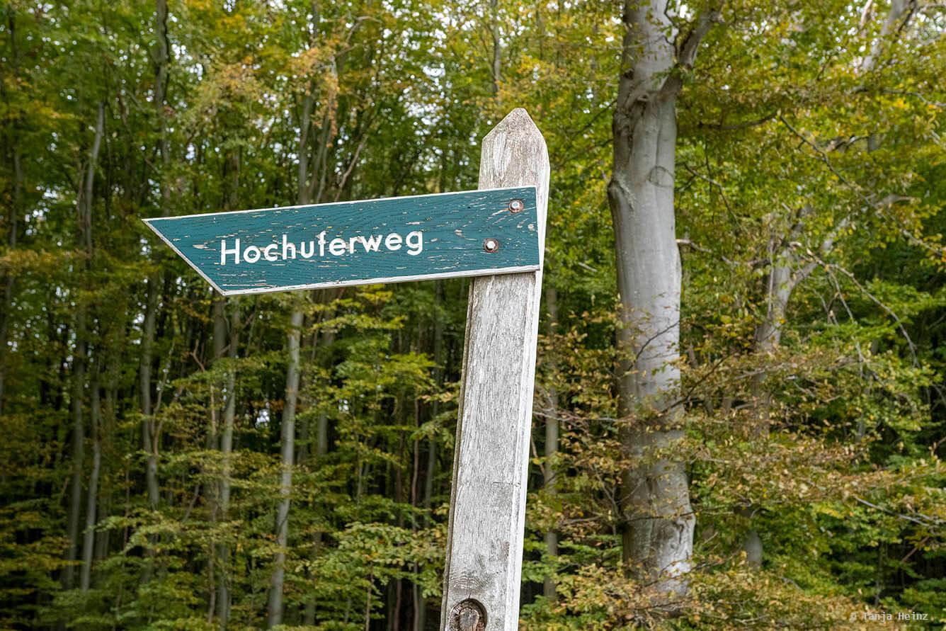Hochuferweg durch die Buchenwälder