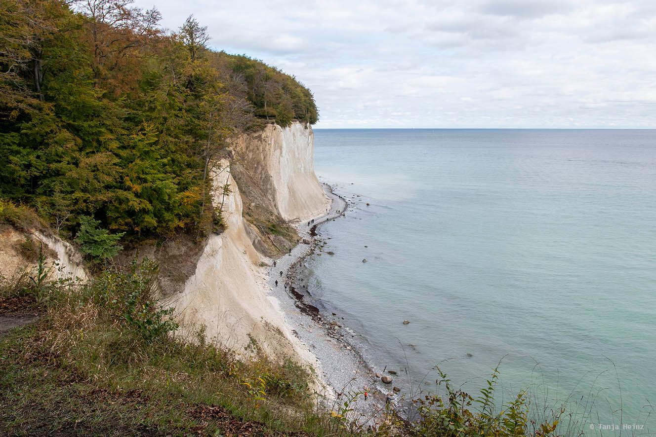 Kreidefelsen und Buchenwälder auf Rügen