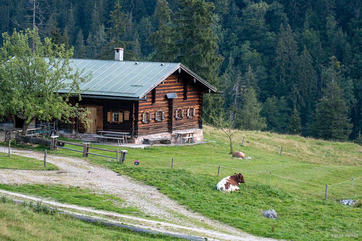 Alm im Berchtesgadener Land