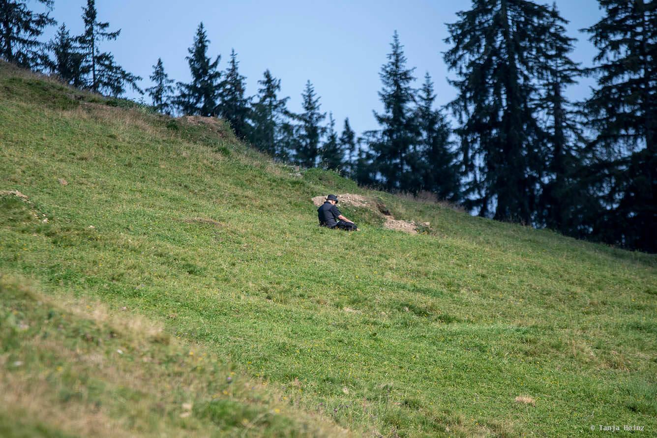 Man filming alpine marmots