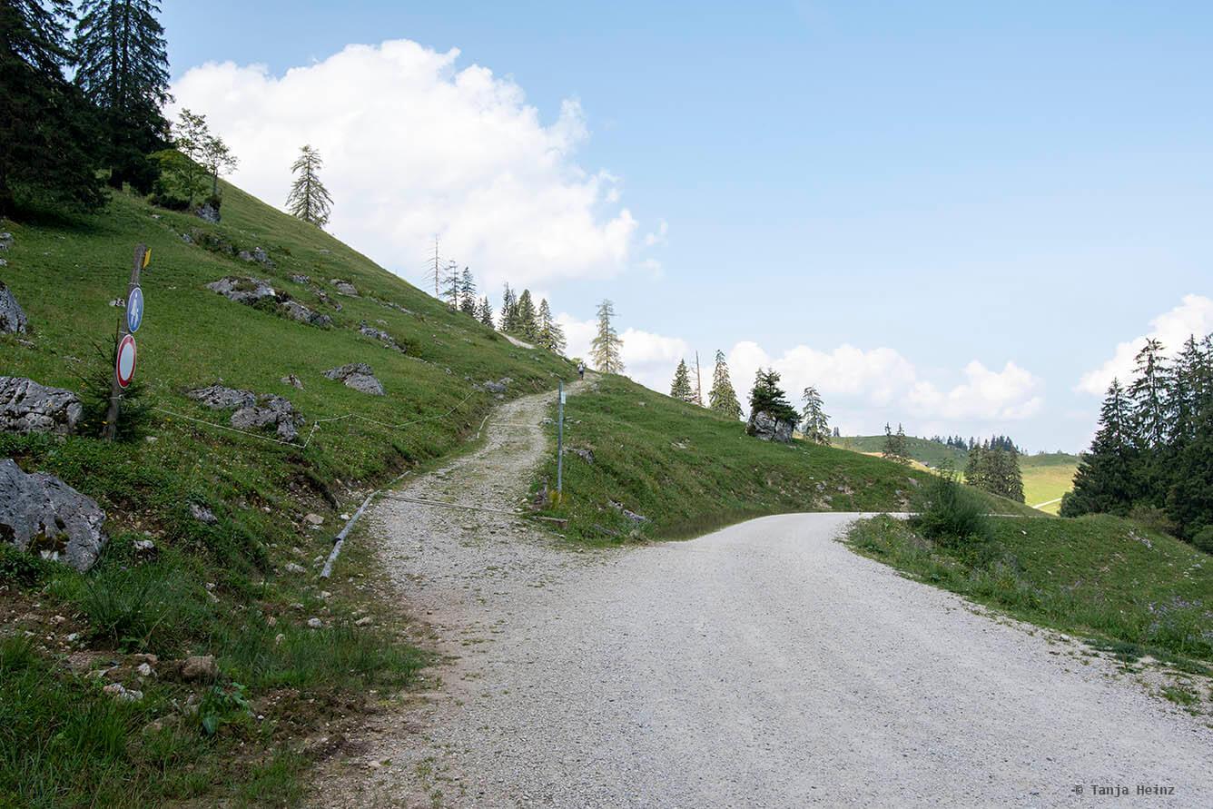 Kreuzung in der Nähe der Königsbachalm
