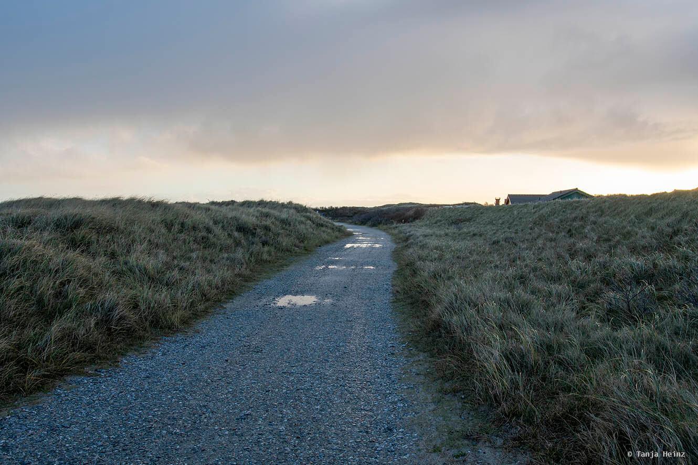 Weg auf der Düne