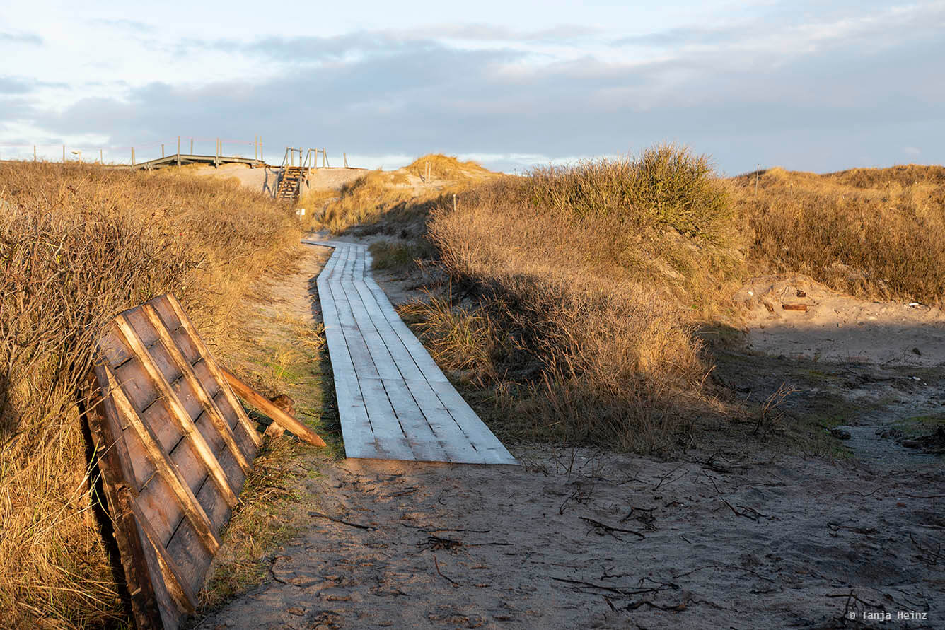 Path on the Düne