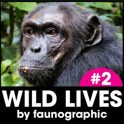 WILD LIVES Podcast