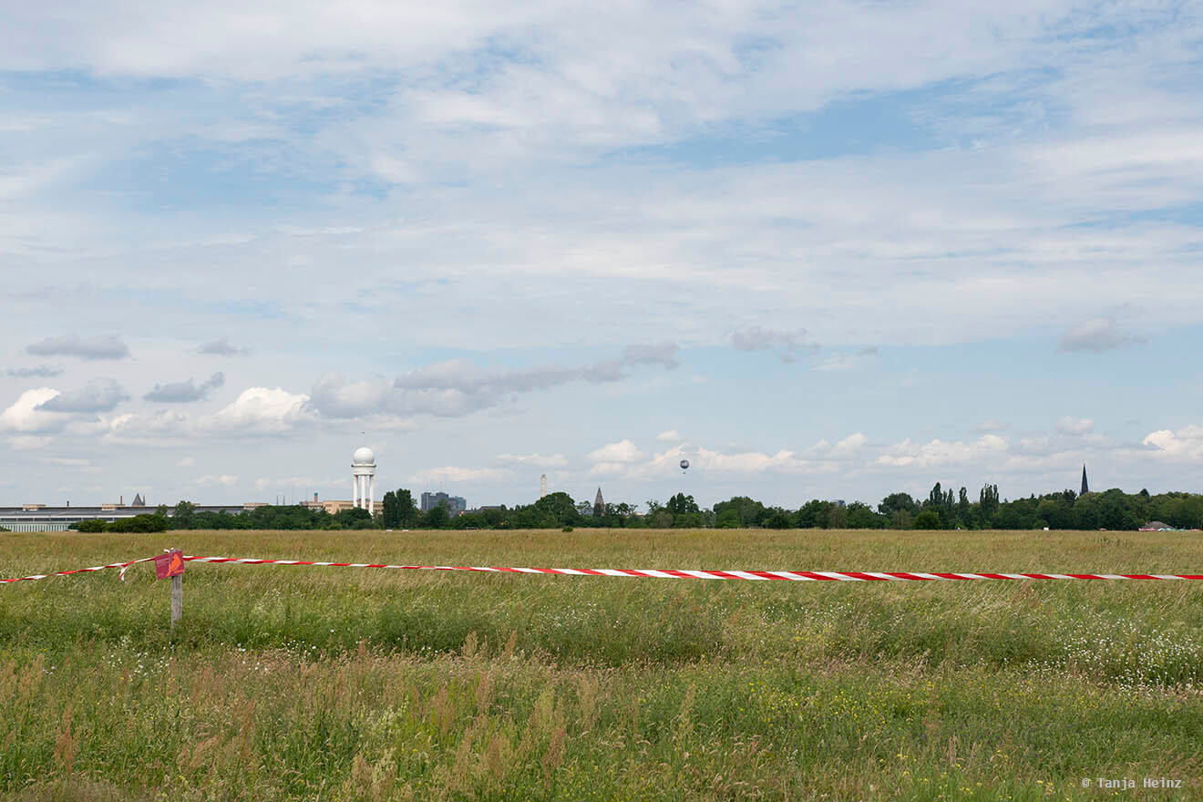 Wiese auf dem Tempelhofer Feld