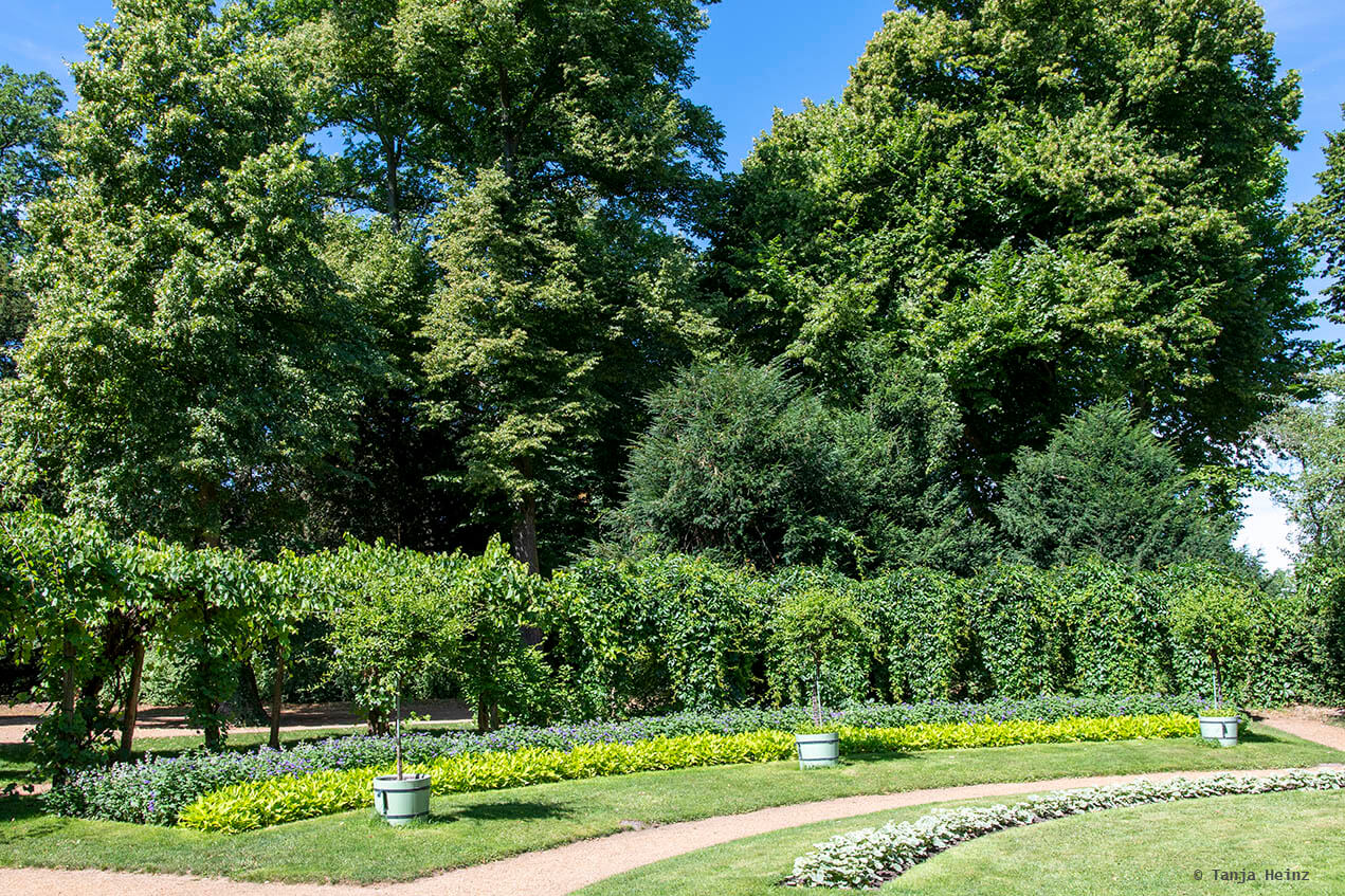 Garten auf der Pfaueninsel