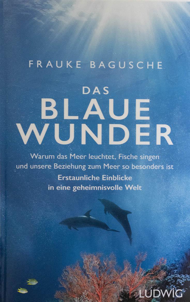 Das Blaue Wunder von Frauke Bagusche
