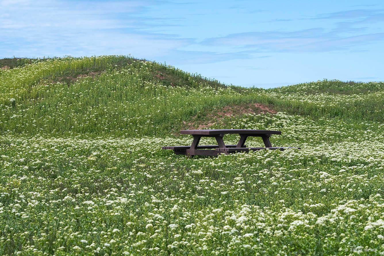 Landschaft auf Helgoland