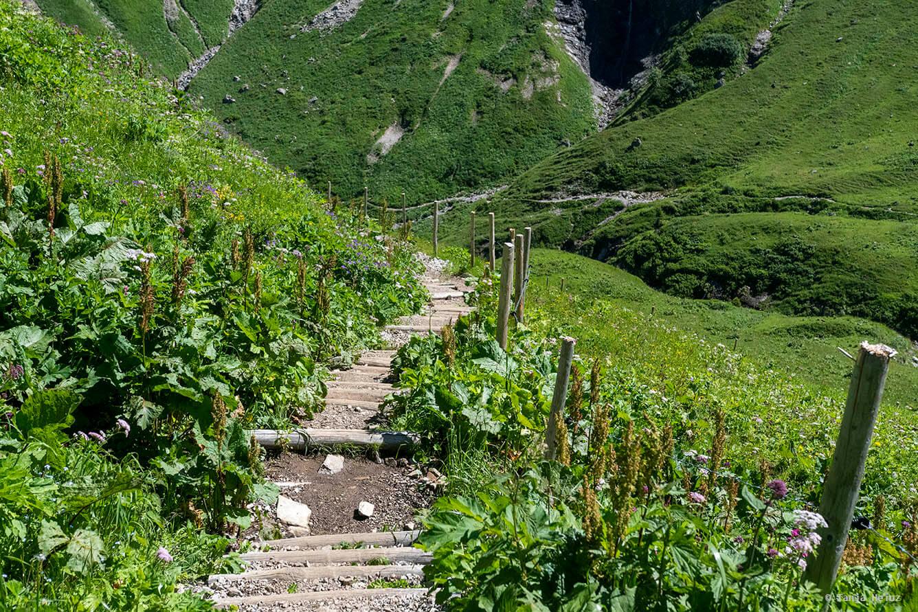 Trail in the Allgäu Alps