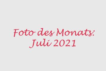 Foto des Monats Juli 2021